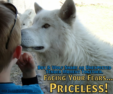 Boy Comes Face to Face with Wolf, Truth about Wolves found in DNA by: Jennifer Kruse, LMT CRMT - Anishinaabe - Inspirational Holistic Healer, Speaker & Writer - Fargo, ND - JenniferKruse.com and Aspire2Heal.com