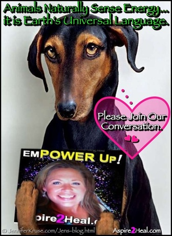 Communicating with Animals: Energy is Earth's Universal Language by: Jennifer Kruse, LMT CRMT - Certified Reiki Master Teacher - Fargo, ND - JenniferKruse.com
