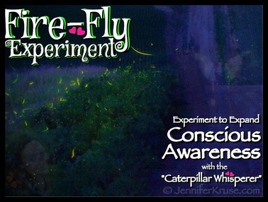 Fire-Fly Experiment - Expanding Your Conscious Awareness... by: Jennifer Kruse, LMT CRMT - Reiki Master Teacher - Fargo - JenniferKruse.com