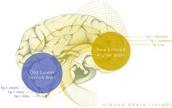Fargo / Moorhead's HIGHER BRAIN LIVING® 'Wake Up' Call to Action by: Jennifer Kruse, LMT CRMT - First Advanced Licensed Higher Brain Living® Facilitator - A new brain. A new beginning. Sessions offered by JenniferKruse.com